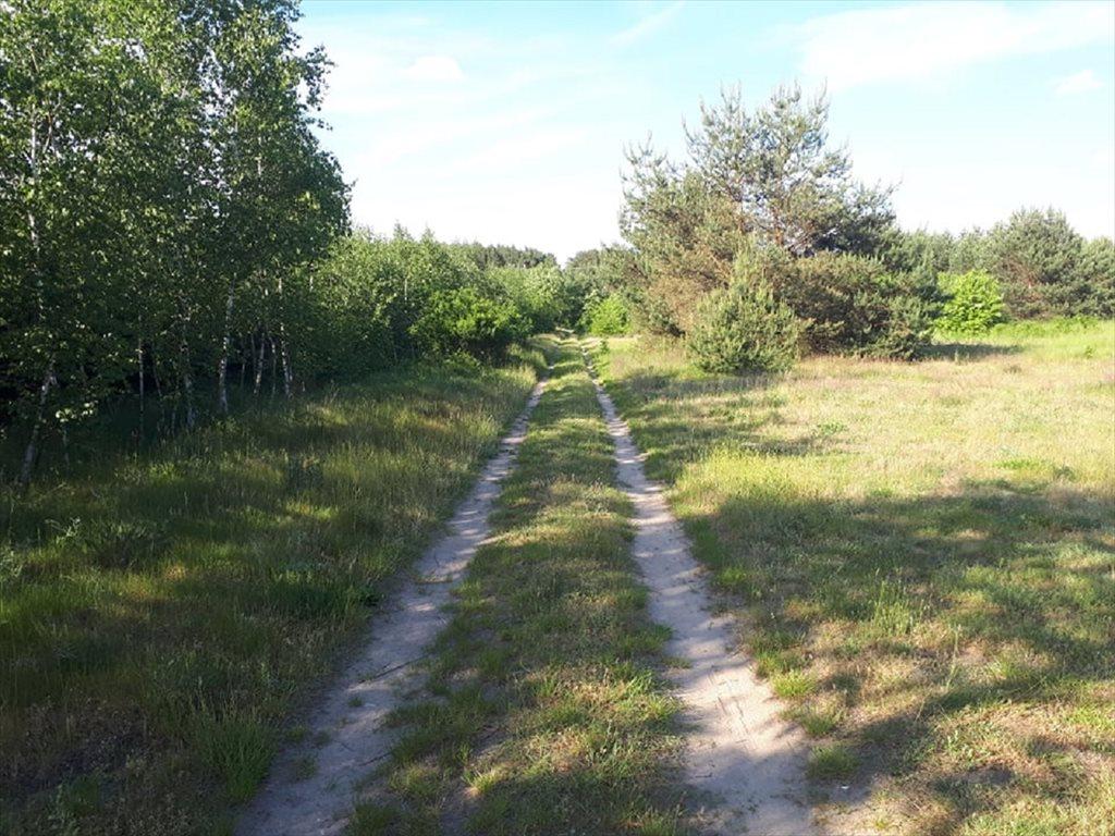 Działka budowlana na sprzedaż Wójcice, Jelcz-Laskowice  61612m2 Foto 5