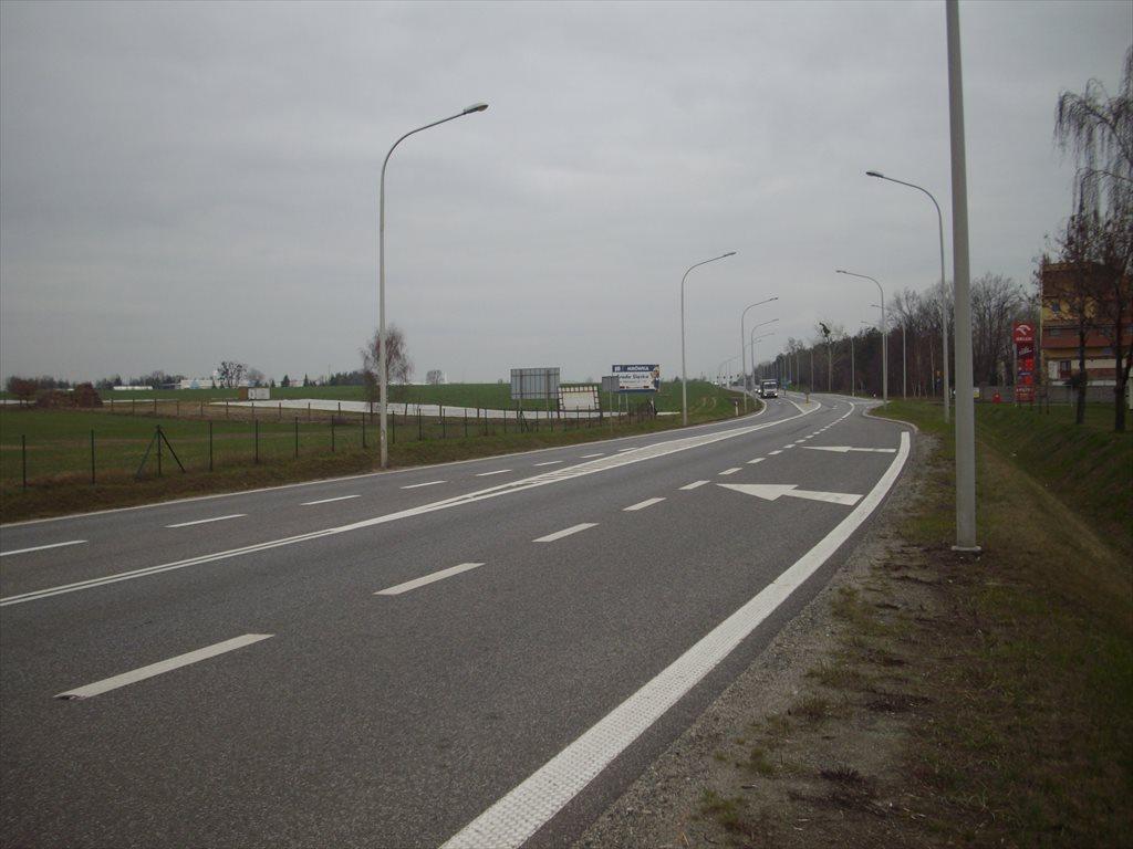 Działka inwestycyjna na sprzedaż Środa Śląska, Droga 94  400000m2 Foto 5