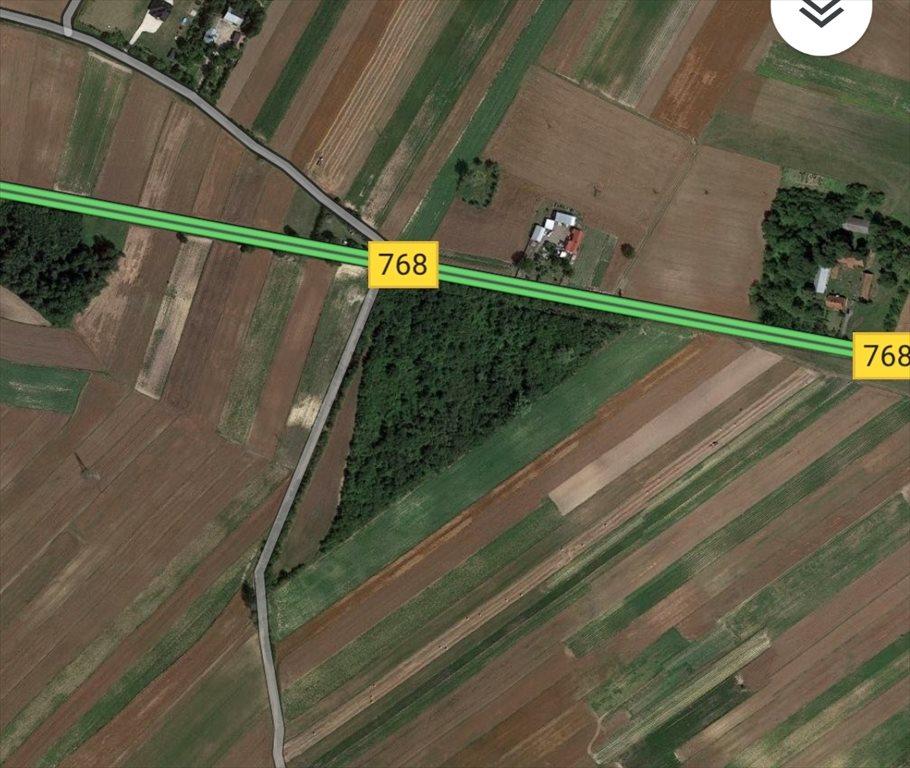 Działka rolna na sprzedaż Drożejowice  32700m2 Foto 1