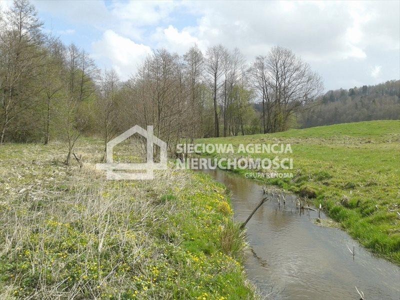 Działka budowlana na sprzedaż Kobysewo  4197m2 Foto 1