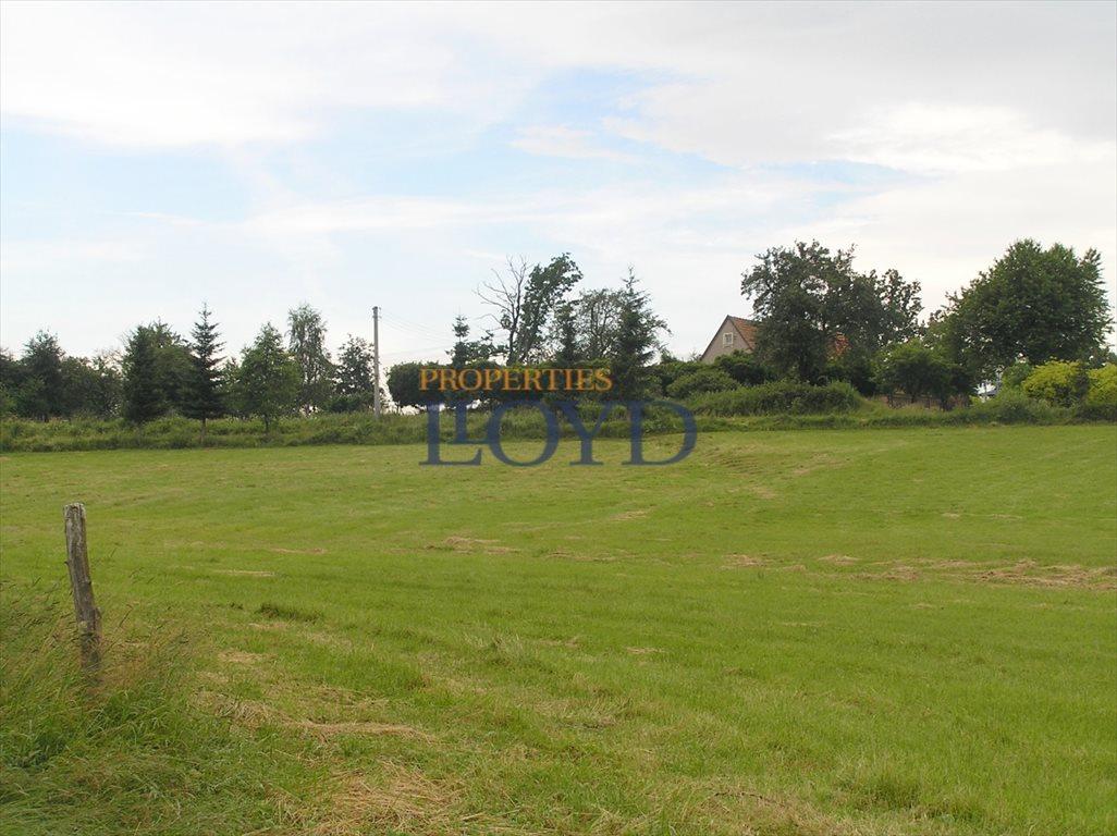 Działka budowlana na sprzedaż Stary Wielisław, Wybickiego  1256m2 Foto 7
