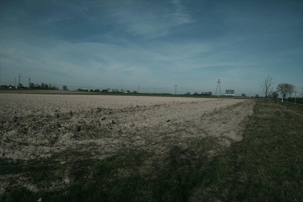Działka budowlana na sprzedaż Borowa, Długołęka  37536m2 Foto 4