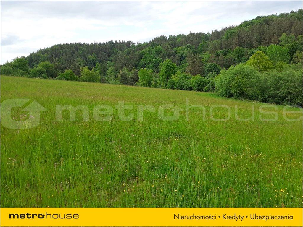 Działka rolna na sprzedaż Średnia Wieś, Lesko  10300m2 Foto 6