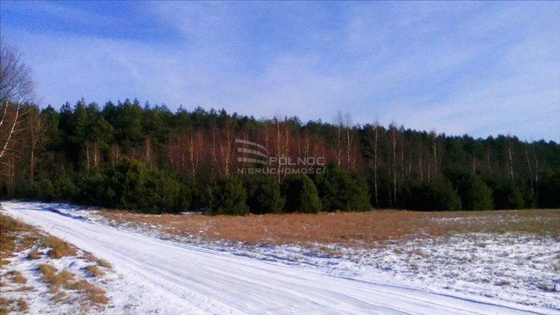 Działka leśna na sprzedaż Żdżary  36600m2 Foto 3