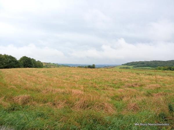 Działka rolna na sprzedaż Łajsce  8500m2 Foto 2