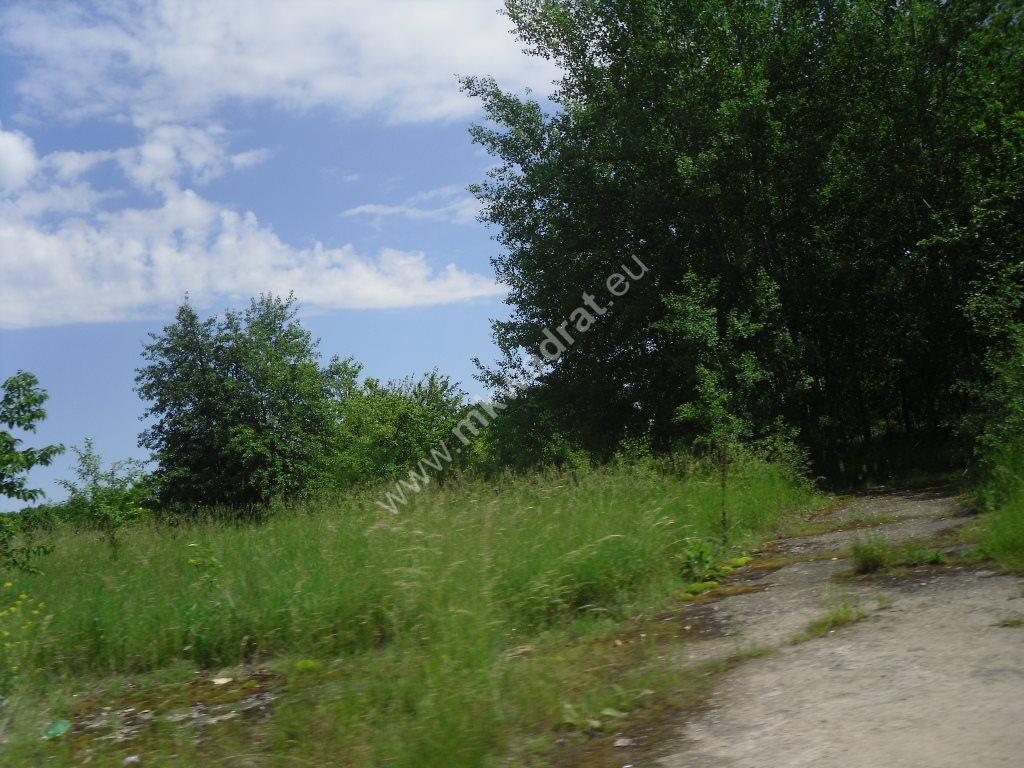 Działka siedliskowa na sprzedaż Sowia Wola  15000m2 Foto 7