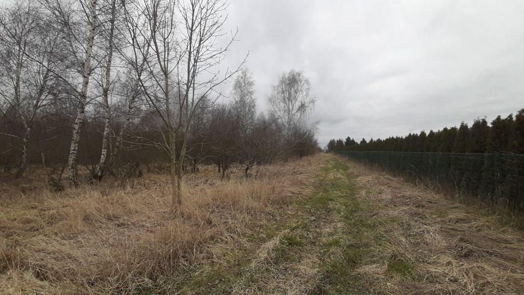 Działka rolna na sprzedaż Karwowo  33000m2 Foto 1