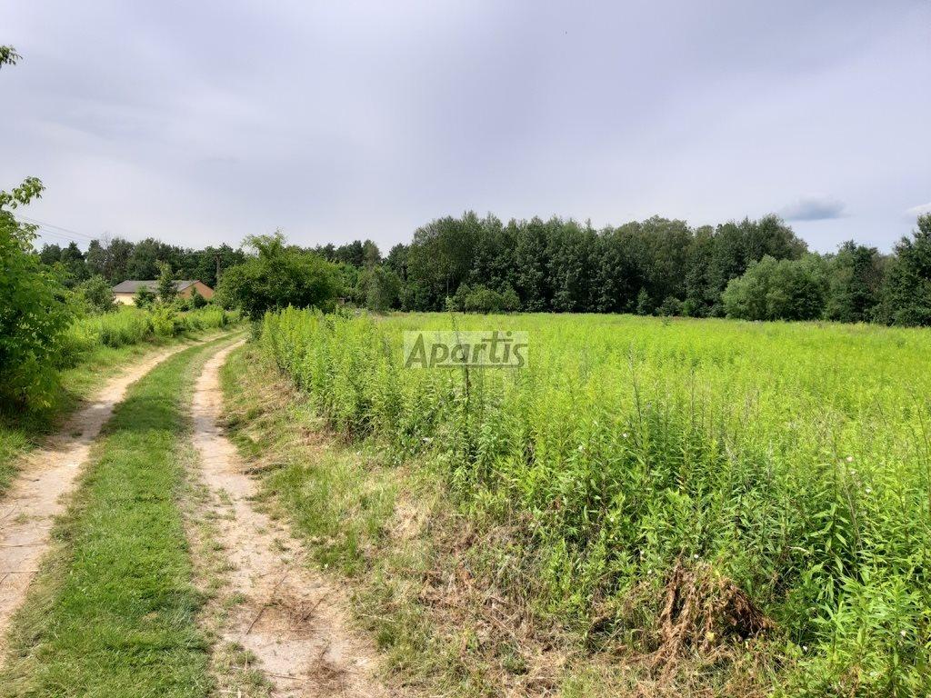 Działka rolna na sprzedaż Budziska  8229m2 Foto 1