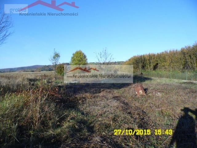 Działka budowlana na sprzedaż Korczyna  4500m2 Foto 1