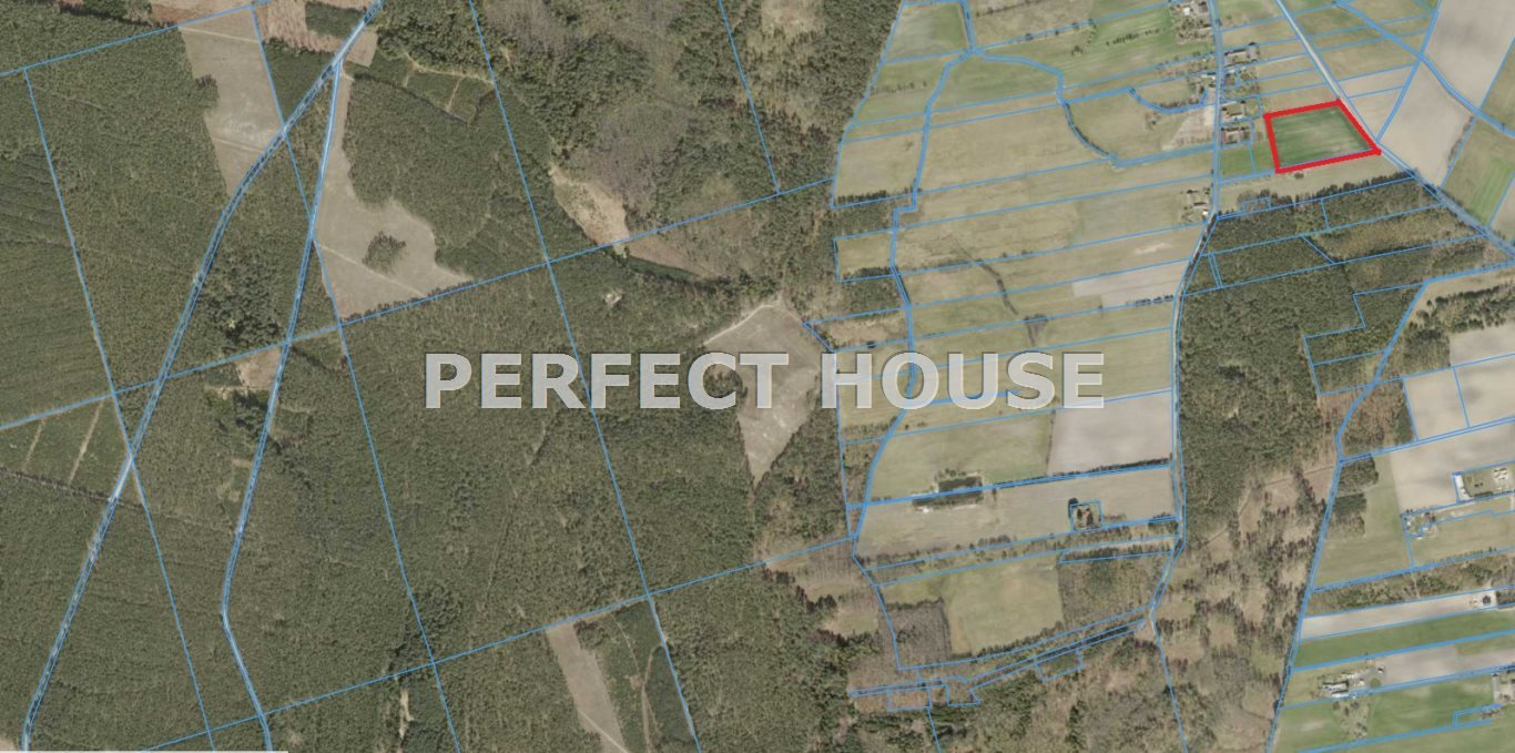 Działka rolna na sprzedaż Miłkowo  3000m2 Foto 3