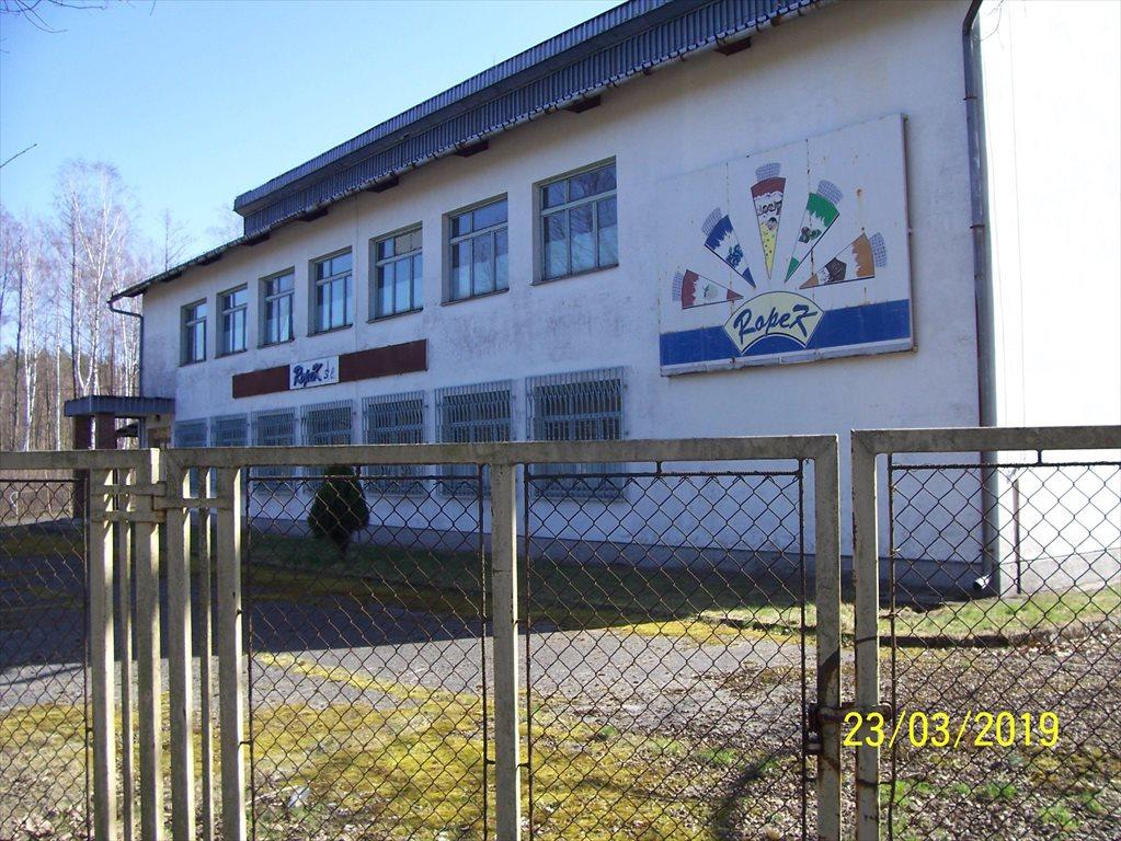 Lokal użytkowy na sprzedaż Przyborów, Droga na Borzęcin  650m2 Foto 1