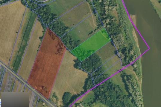 Działka rolna na sprzedaż Rudniki  33200m2 Foto 4