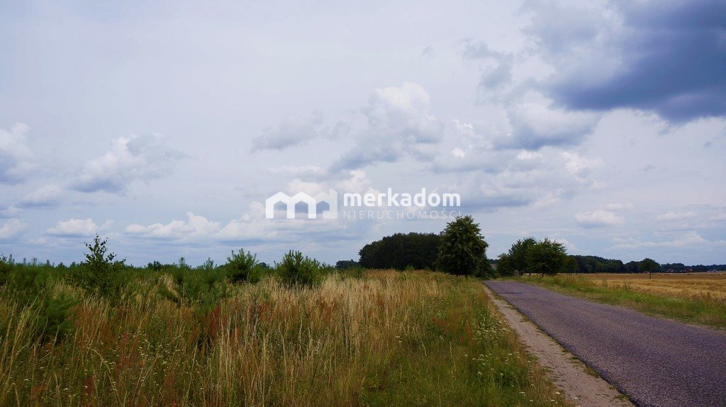 Działka rolna na sprzedaż Grzybowo  21116m2 Foto 6