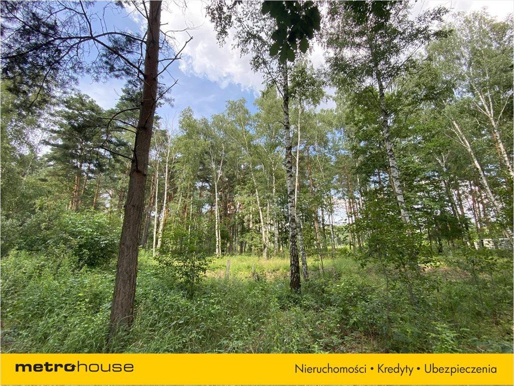 Działka leśna na sprzedaż Władysławów, Lesznowola  3128m2 Foto 8