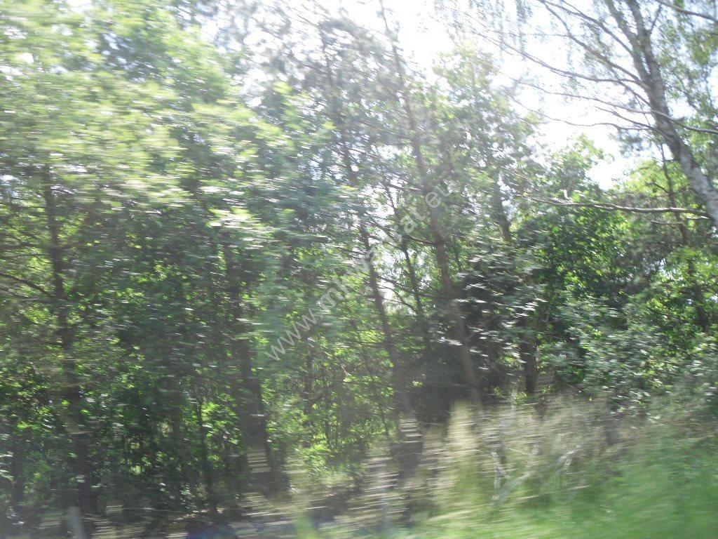 Działka siedliskowa na sprzedaż Sowia Wola  75115m2 Foto 8