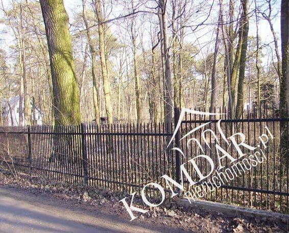 Działka leśna na sprzedaż Podkowa Leśna, Jana Pawła II  2000m2 Foto 8