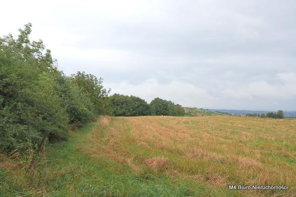 Działka rolna na sprzedaż Łajsce  8500m2 Foto 4