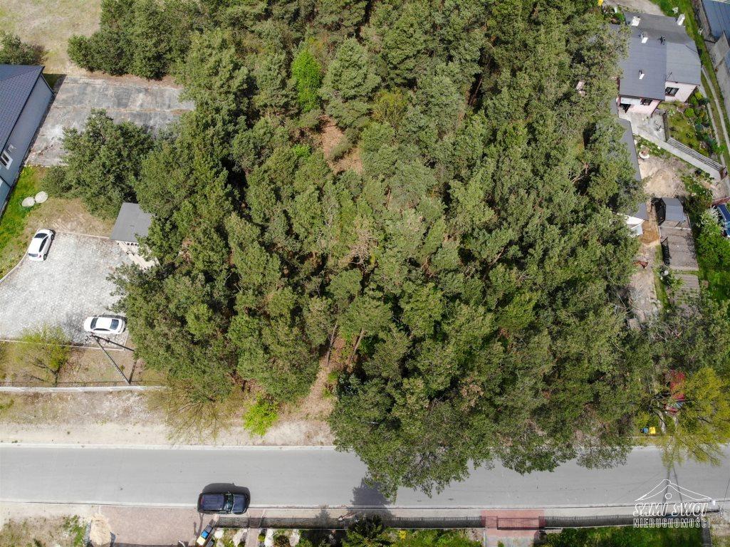 Działka leśna na sprzedaż Pożdżenice  6206m2 Foto 5