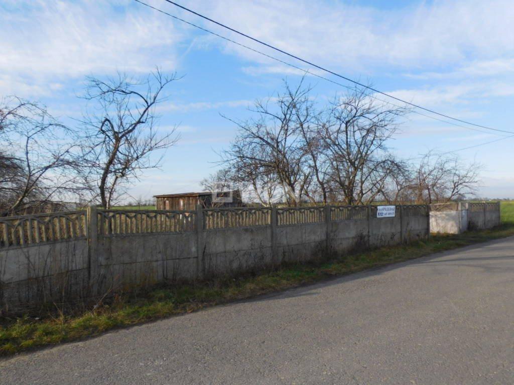 Działka budowlana na sprzedaż Ostrów Wielkopolski, Lewkowiec  2500m2 Foto 2
