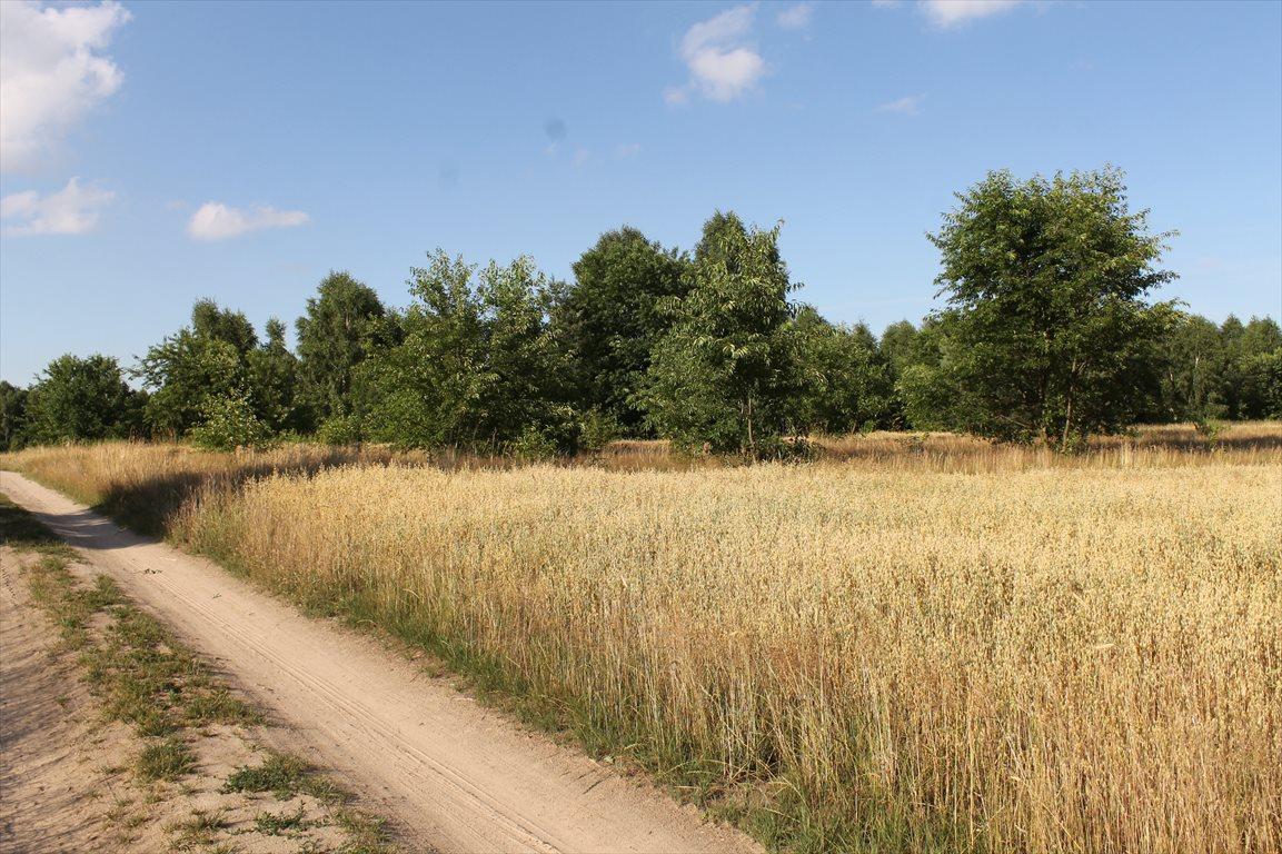 Działka rolna na sprzedaż Łagiewniki Nowe  9500m2 Foto 1