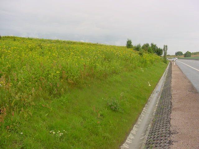 Działka inna na sprzedaż Jankowo Gdańskie, JANKOWO GDAŃSKIE, OBWODOWA  44500m2 Foto 1