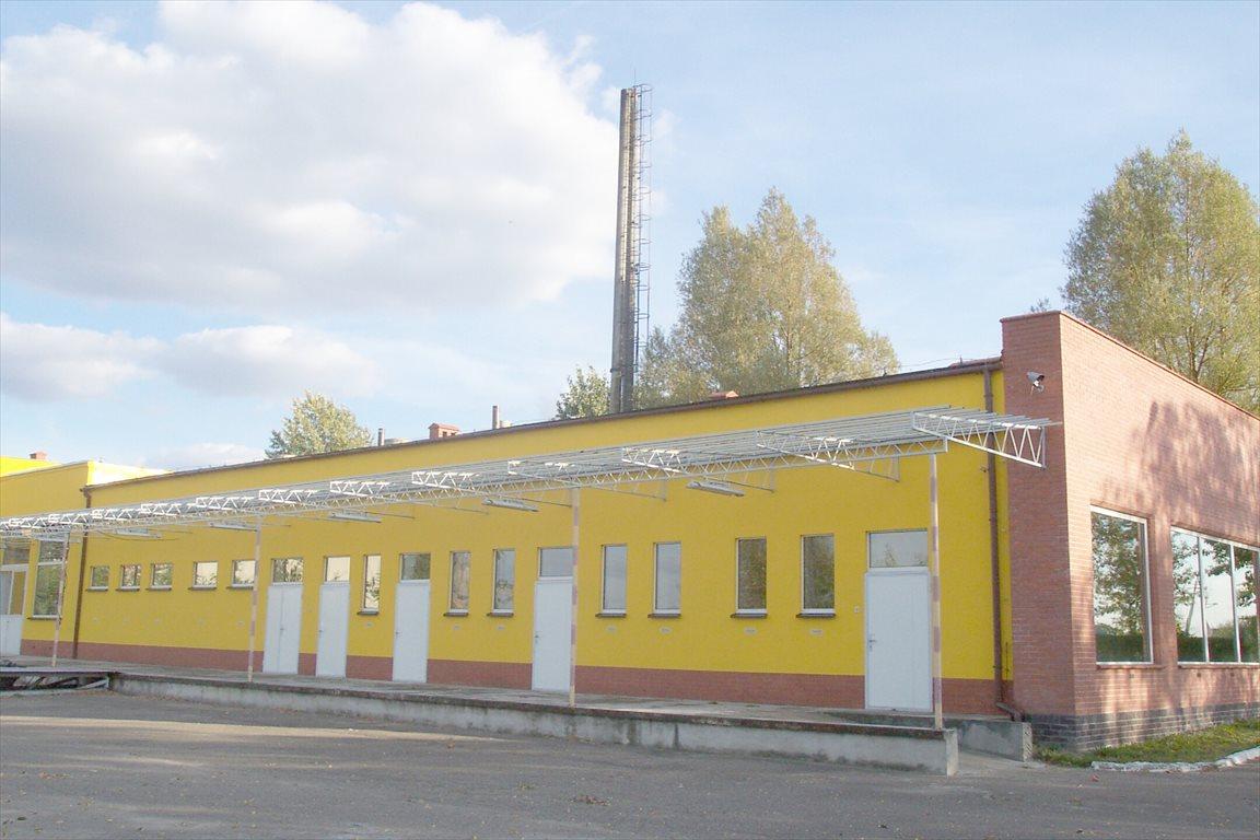 Lokal użytkowy na sprzedaż Rogoźno, Rolna 7  1886m2 Foto 2