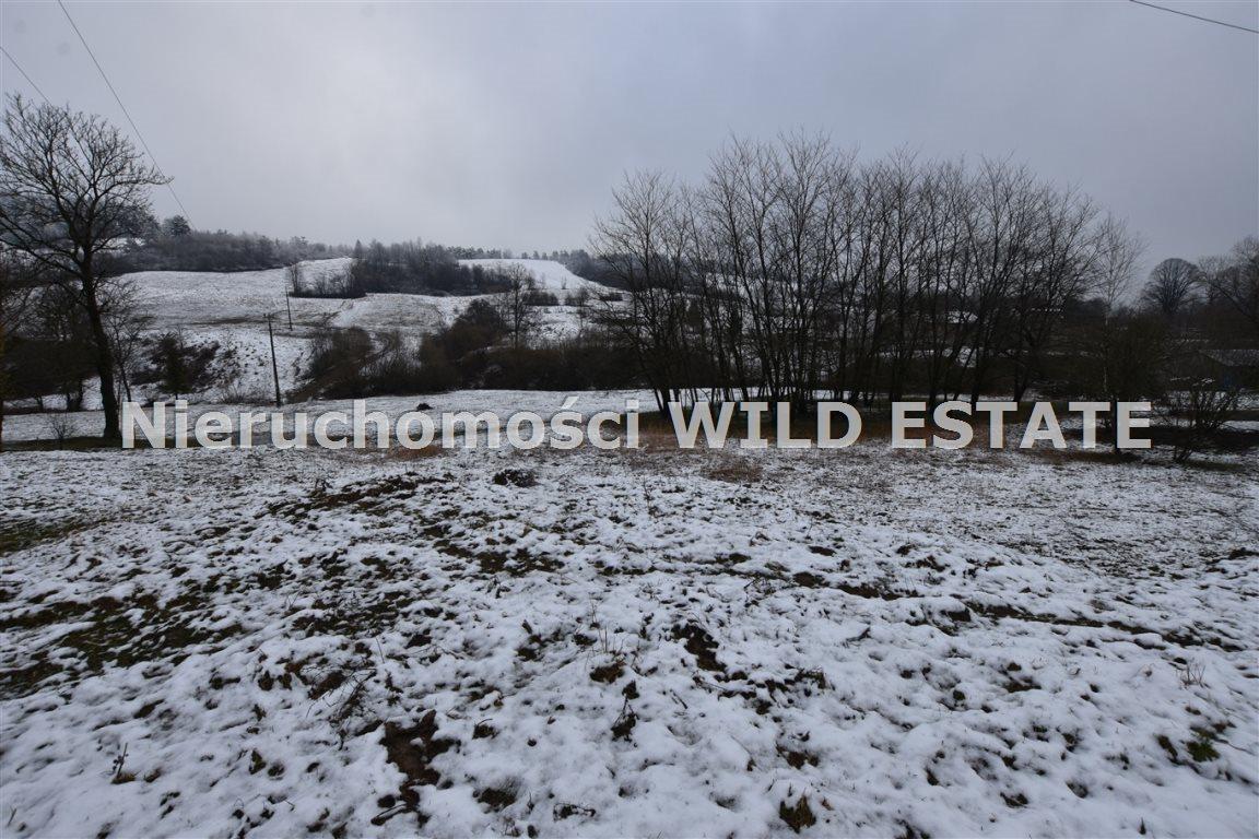 Działka rolna na sprzedaż Paszowa  4002m2 Foto 2