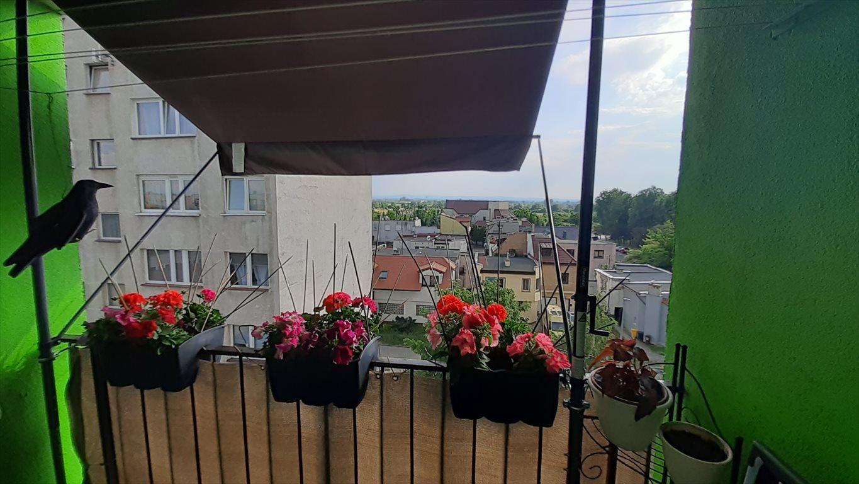 Mieszkanie trzypokojowe na sprzedaż Legnica, Piekary A, Karkonoska  63m2 Foto 14