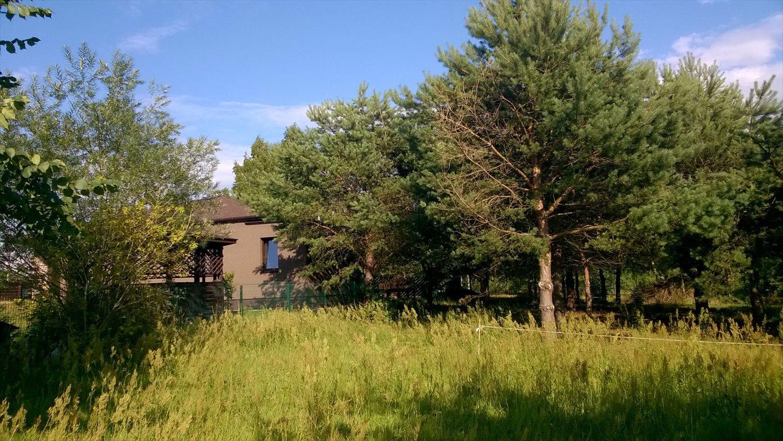 Działka budowlana na sprzedaż Kruszew  1028m2 Foto 1
