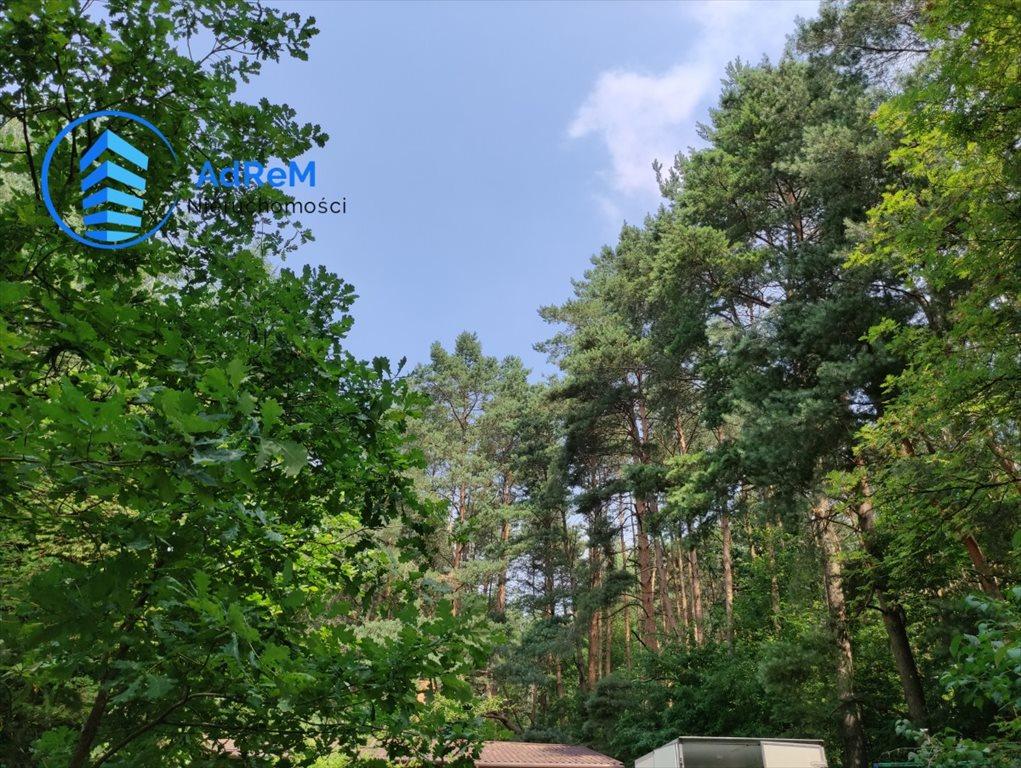 Działka leśna na sprzedaż Korzeniówka, Rysia  2356m2 Foto 5