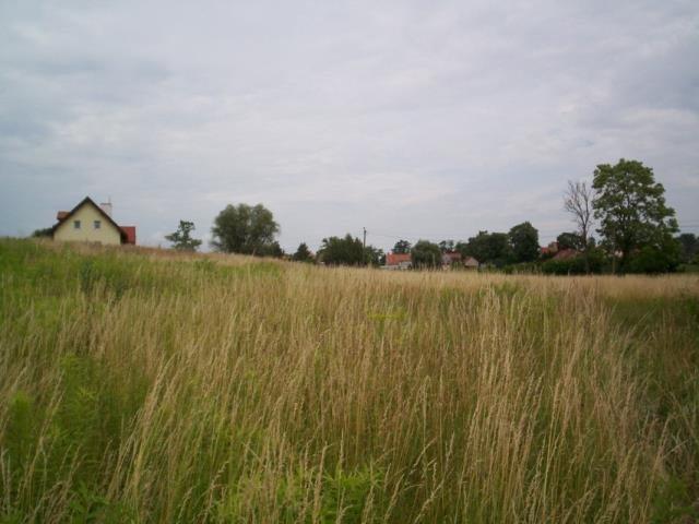 Działka budowlana na sprzedaż Nowa Wieś  755m2 Foto 8