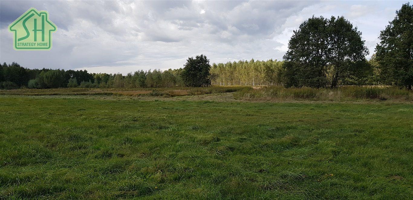 Działka budowlana na sprzedaż Duńkowice, Piaski  1200m2 Foto 3
