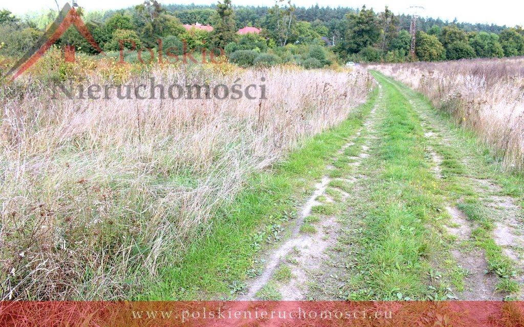 Działka komercyjna na sprzedaż Lublewo Gdańskie, gen. Józefa Wybickiego  5365m2 Foto 10
