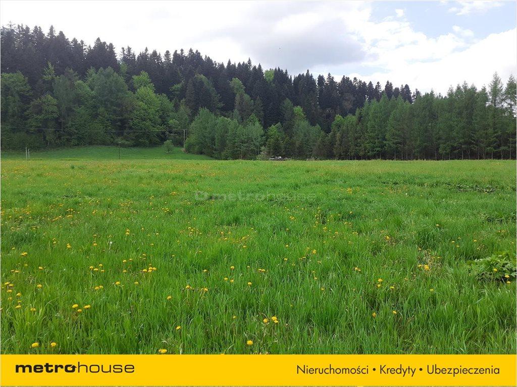 Działka rolna na sprzedaż Łączki, Lesko  3500m2 Foto 6