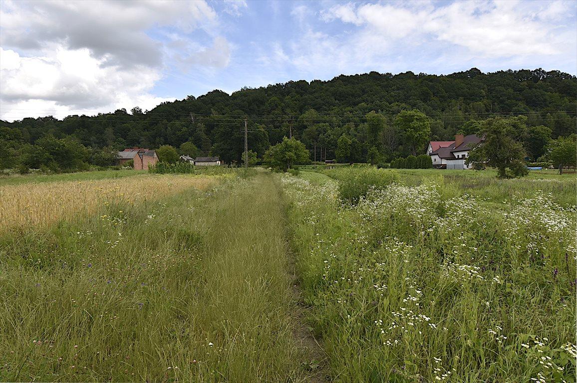 Działka rolna na sprzedaż Puławy  2900m2 Foto 1