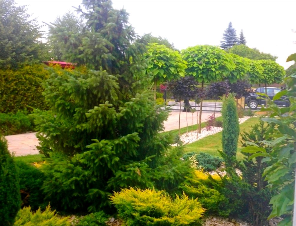 Dom na sprzedaż Rzeszów, Słocina  250m2 Foto 2