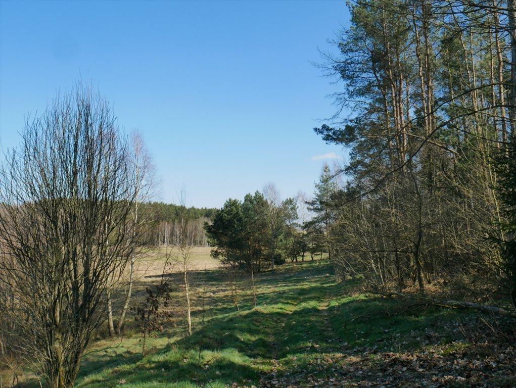 Działka budowlana na sprzedaż Strzepcz, ks. Blocków  1529m2 Foto 10