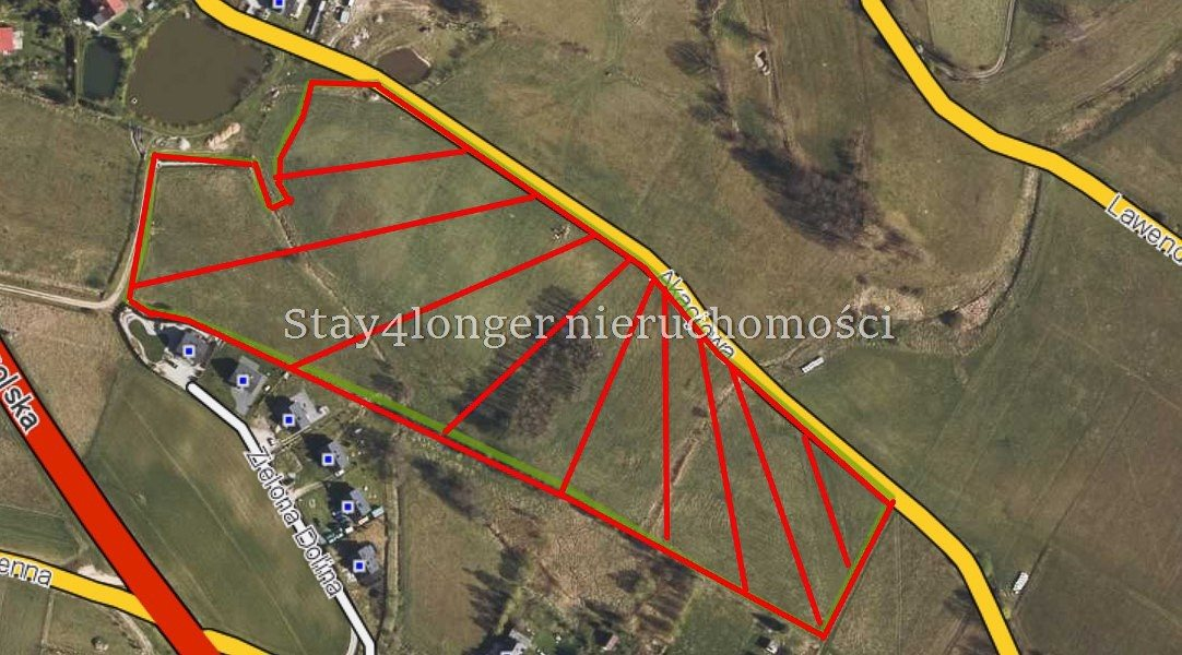 Działka rolna na sprzedaż Sosnówka  39742m2 Foto 4