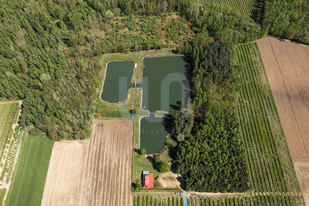 Działka siedliskowa na sprzedaż Zimnice, Piekarska  24000m2 Foto 6