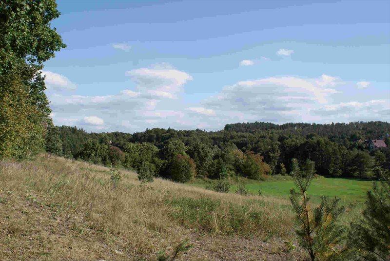 Działka rolna na sprzedaż Sulęczyno  2068m2 Foto 1