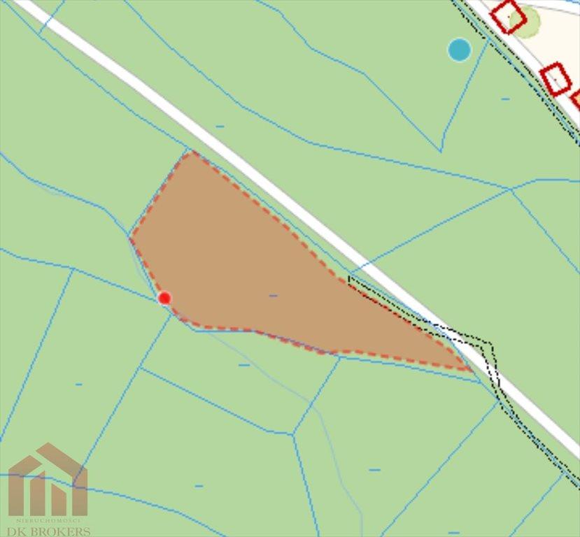 Działka leśna na sprzedaż Glinik Charzewski  11465m2 Foto 1