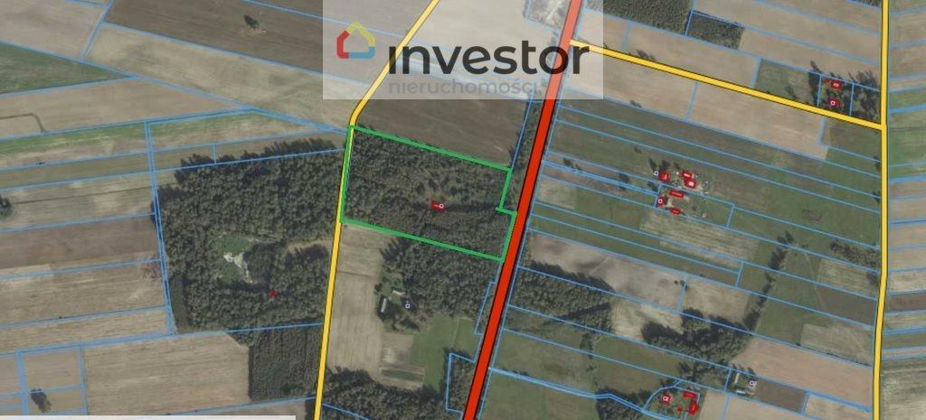 Działka leśna z prawem budowy na sprzedaż Bukowa Wielka  39157m2 Foto 12