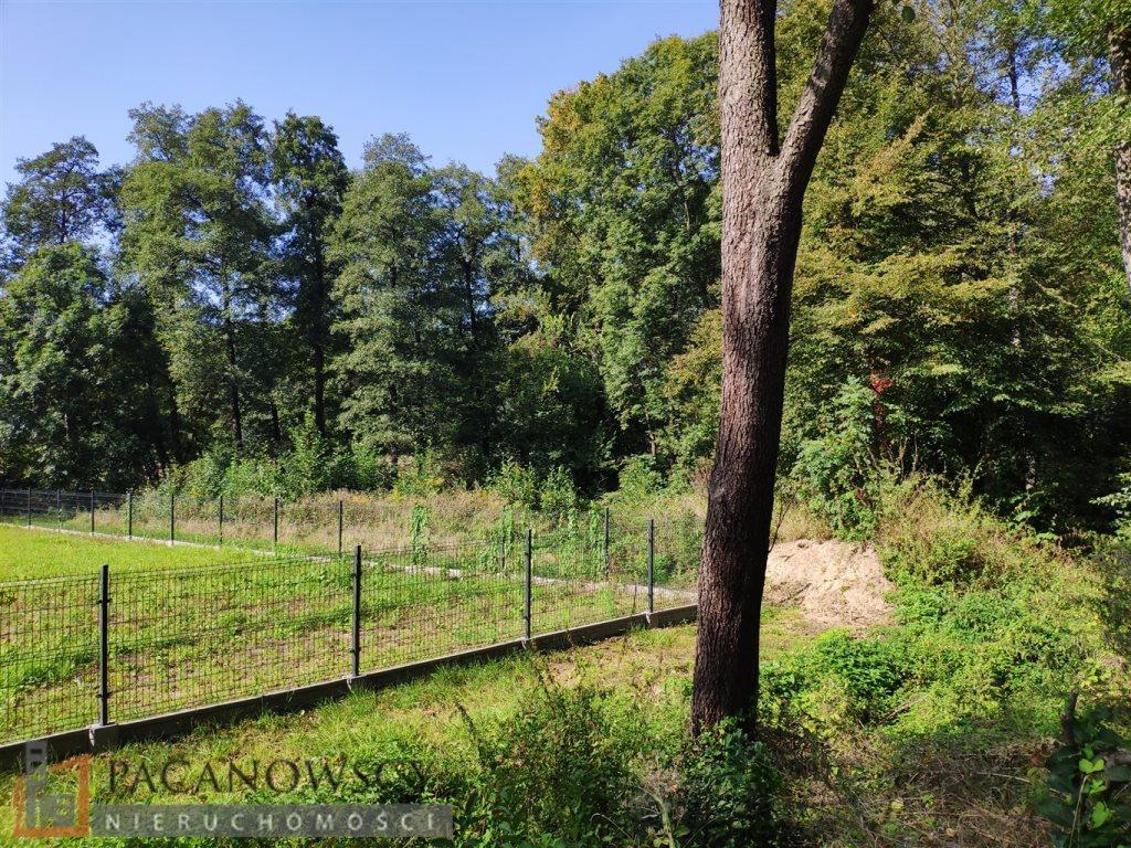 Działka leśna na sprzedaż Januszowice  4556m2 Foto 2