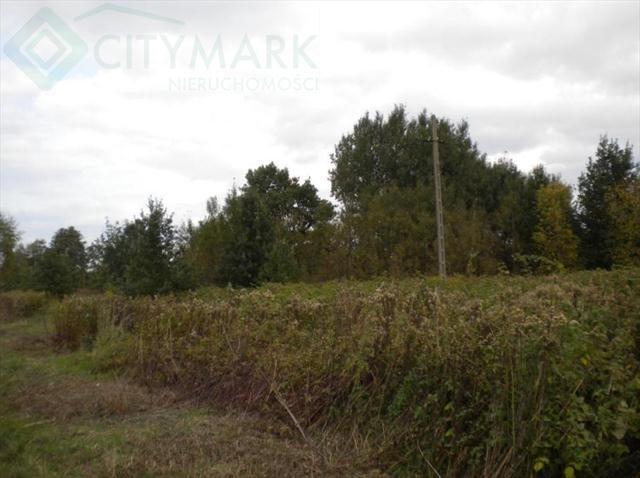 Działka rolna na sprzedaż Klaudyn  45000m2 Foto 2