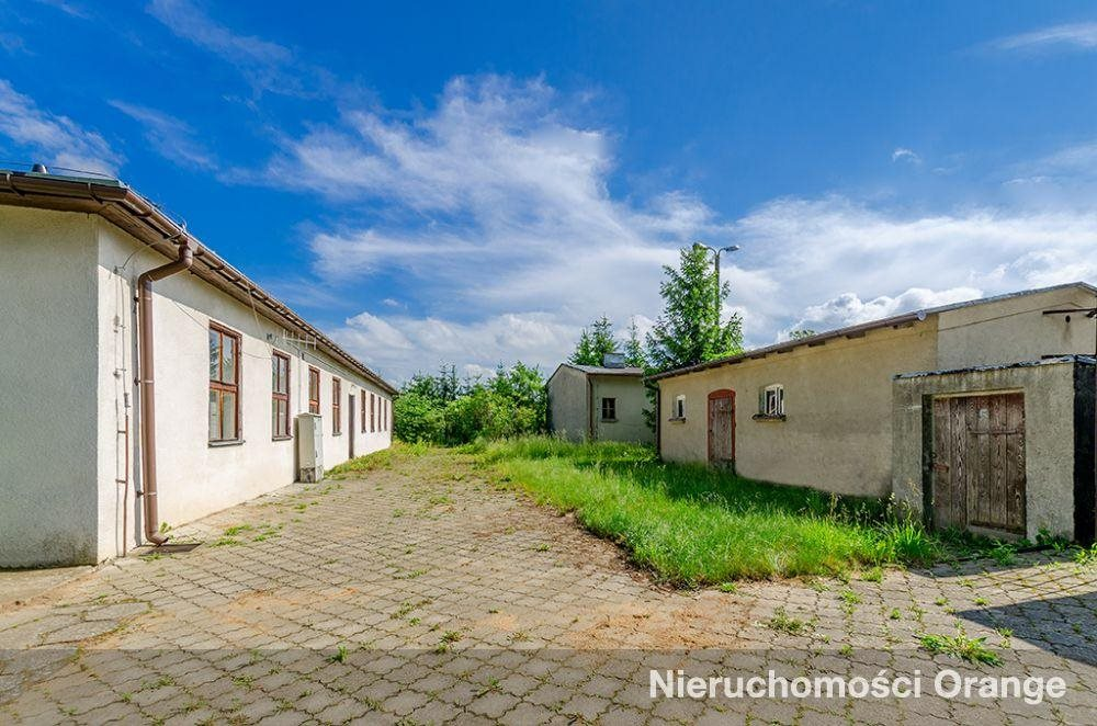 Lokal użytkowy na sprzedaż Koryta  1081m2 Foto 5