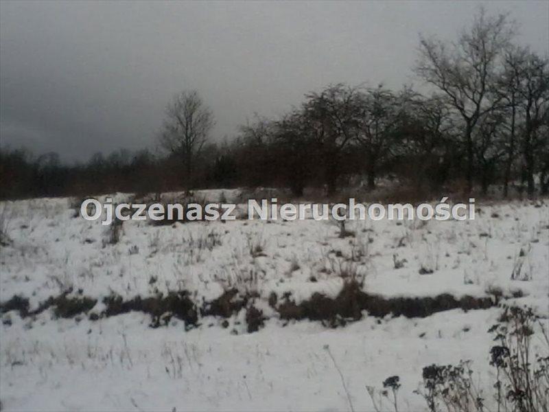 Działka budowlana na sprzedaż Wojcieszyce  49000m2 Foto 5
