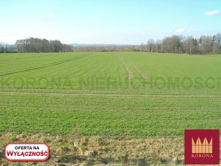 Działka rolna na sprzedaż Adamowice  51000m2 Foto 3