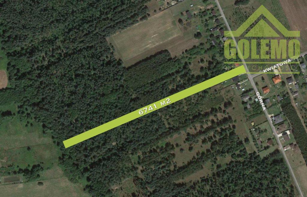 Działka leśna z prawem budowy na sprzedaż Aleksandria, Górna  6741m2 Foto 2