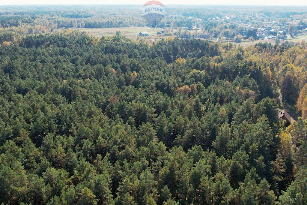 Działka leśna z prawem budowy na sprzedaż Czarnówka  15000m2 Foto 5