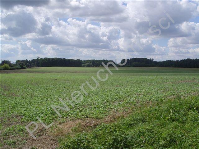 Działka rolna na sprzedaż Pasikonie  80347m2 Foto 3